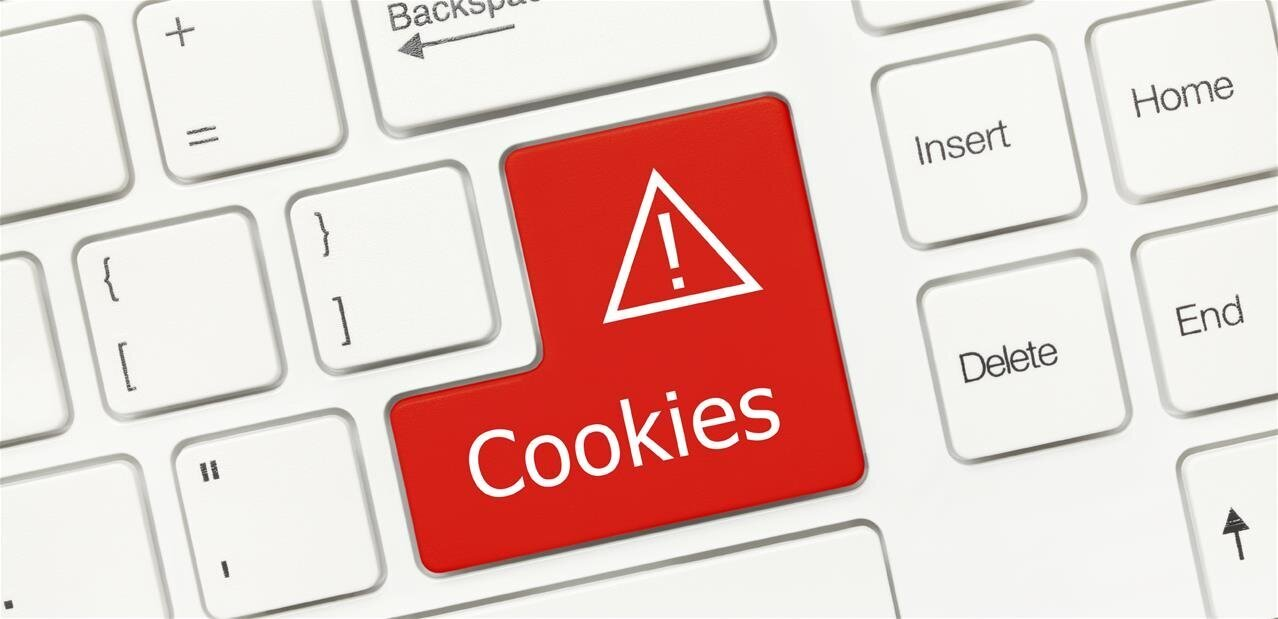 cookies:-the-cnil-will-also-focus-on-the-websites-of-political-parties